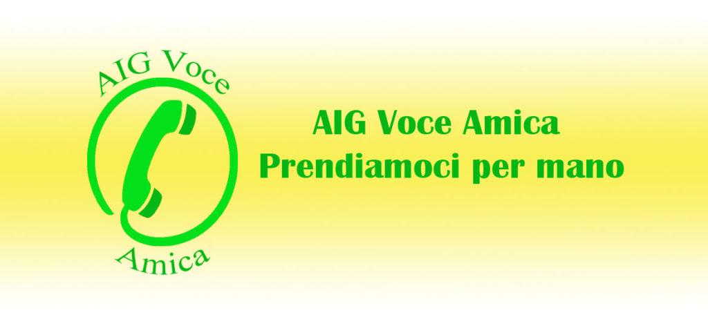 AIG Voce Amica
